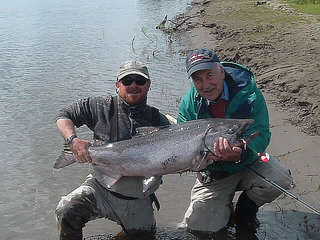 king_salmon_001