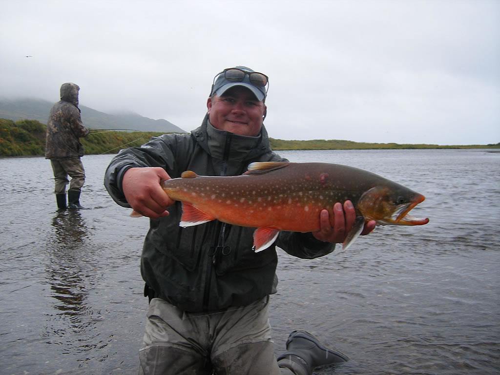 Salmon and arctic char alaska fishing lodge for Arctic char fish