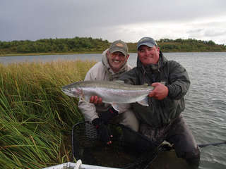 rainbow_trout_022