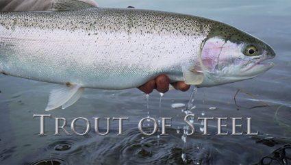 Trout of Steel | Short Film